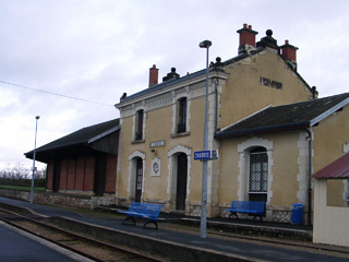 Marronnier de Bigot à la gare de Chabris (36)