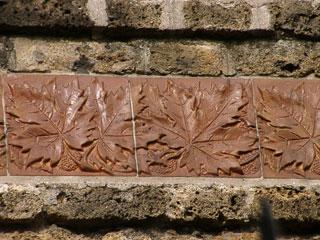 Platane d'Emile Muller & Cie à Villemomble (93)