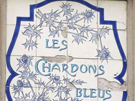 LES CHARDONS BLEUS au Crotoy (80)