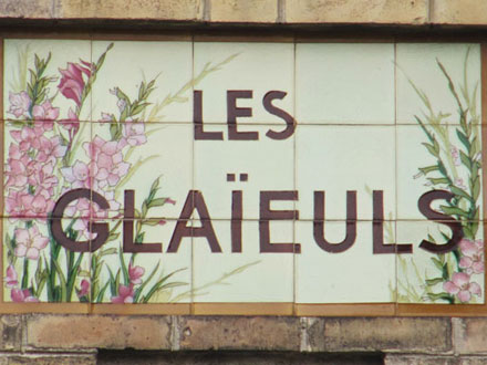 LES GLAIEULS à Versailles (78)