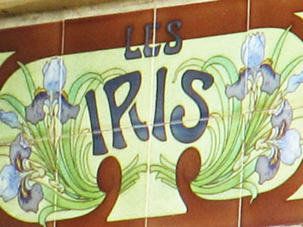 LES IRIS à Nogent-sur-Marne (94)