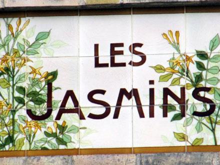 LES JASMINS à Versailles (78)