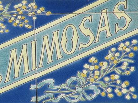 LES MIMOSAS à Noisy-le-Sec (93)