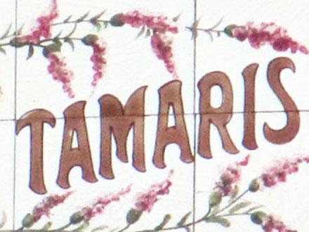 LES TAMARIS à Nogent-sur-Seine (10)