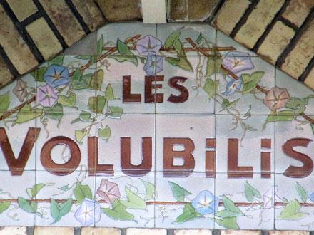 LES VOLUBILIS à Versailles (78)